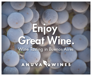 Anuva Wines - Tasting in Buenos Aires